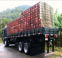 fabricantes de gancho para amarração de carga